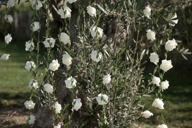 Girlanda s růžemi bílá 120 cm 731251787