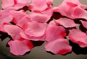 Plátky růží, světle růžové