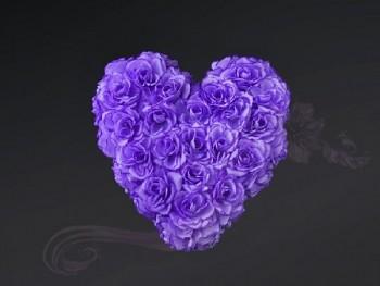 Ozdoba na auto srdce prázdné, 40cm, lila