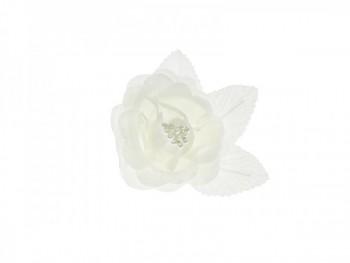 Růže 731190219