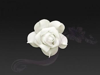 Květ 731190290