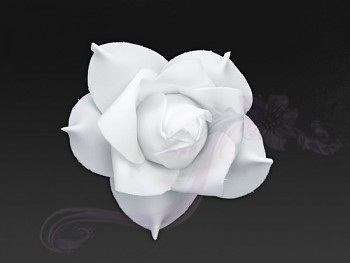 Květ 731190291