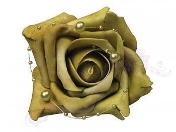 Růže 731190681