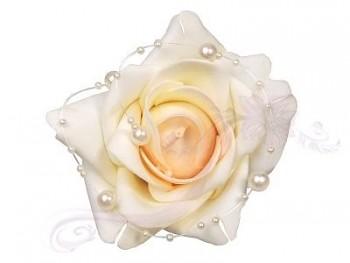 Růže 731190895