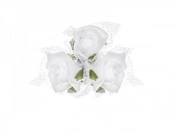 Růže 731190976