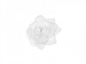 Růže 731191039