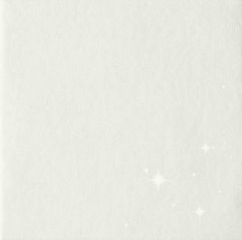 Ubrousek BRILLIANCE  bílý, 50 ks