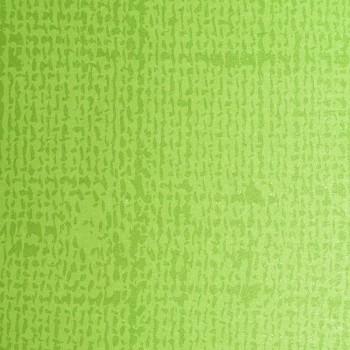 Papírová prostírka 35*45cm, list. zeleň, 250 ks 731229344