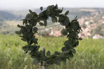Věnec z eukalyptu, 50 cm 731251807